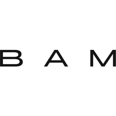 BAM Visions4Children