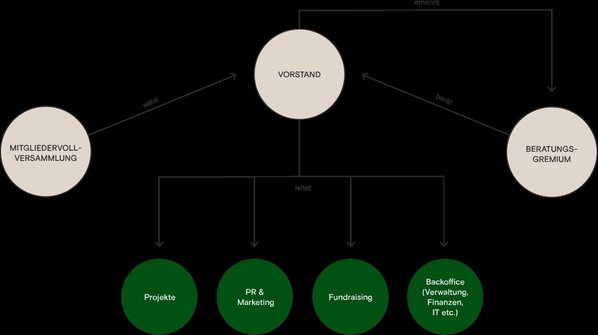 Struktur-Grafik Visions for Children Visions4Children